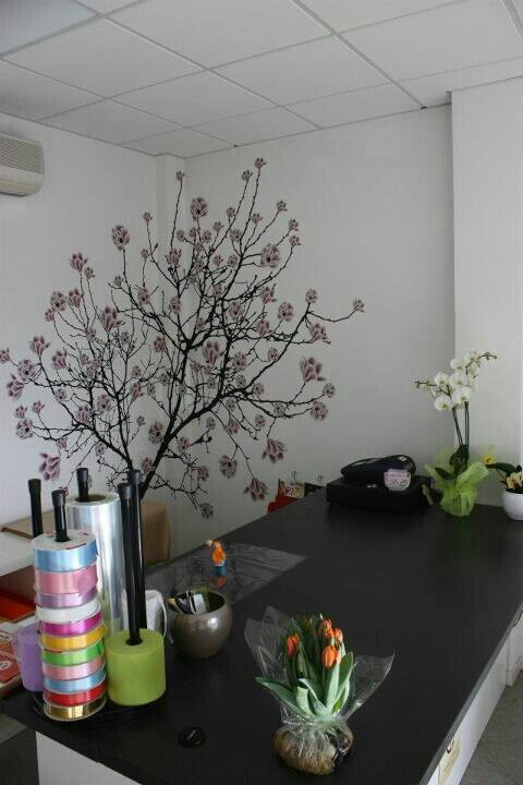 Vetrofanie e decori murali fioreria petali Treppo Grande